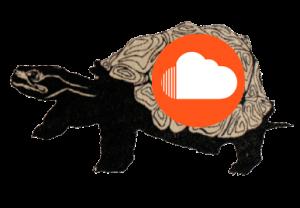turtle_crisisfolk_soundcloud